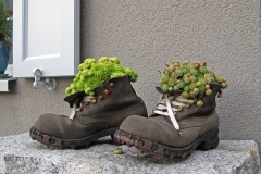 The flower shoes