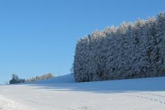 White-blue stillness