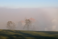 The foggy pastoral